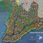 Primer-monorriel-de-BYD-en-Brasil-iniciará-su-construcción