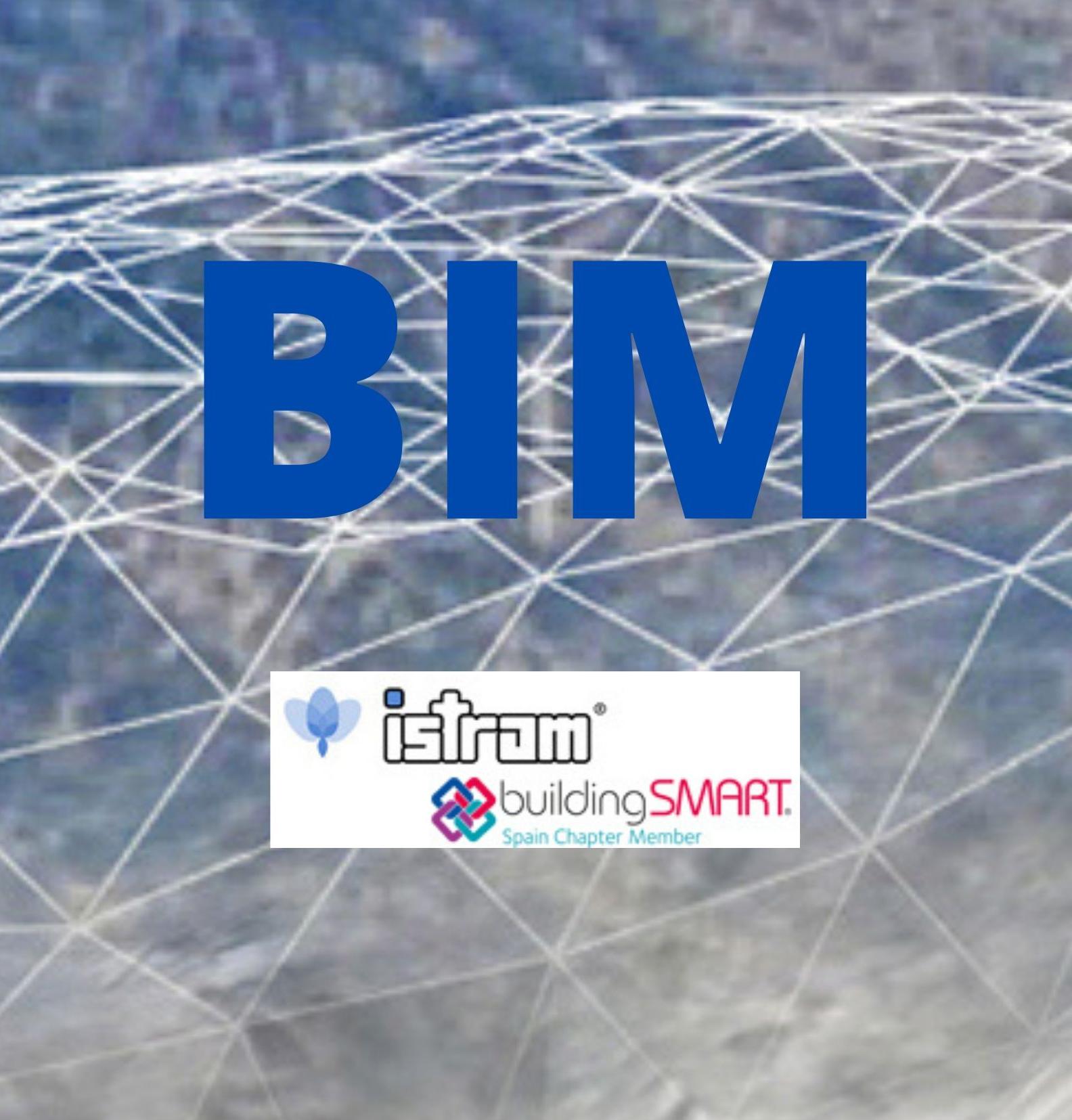 Imagen BIM copy